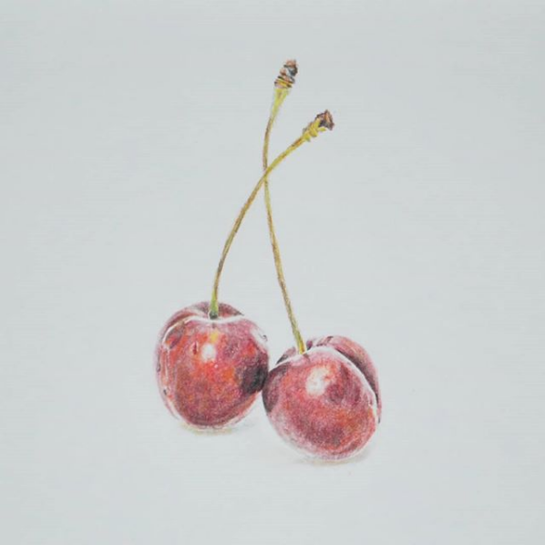 "Screenshot_2019-02-25 Blair O on Instagram ""I seem to be on a fruit-drawing spree 😉 🍒Chalk pastel drawing ✏🍒 #cherry #fr[...]"